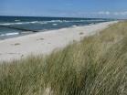Der Badespaß am schönen Sandstrand